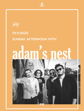Iasi: Sunday Afternoon with Adam's Nest