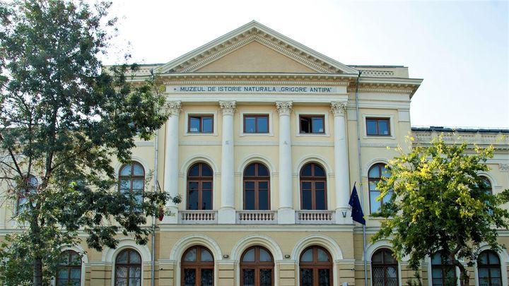 Expozitia permanenta a Muzeului Antipa