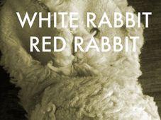 Iepurele Alb, Iepurele Rosu / White rabbit, red rabbit, cu Ofelia Popii - transmisie live@Scena Digitala