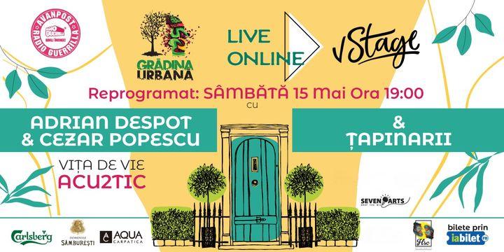 Concert Vita de Vie (acu2tic) si Tapinarii (Online)