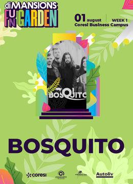 Brasov: Concert Bosquito