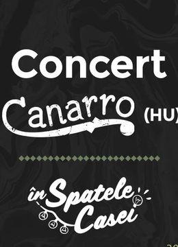 Timisoara: Concert Canarro (gypsy swing jazz)