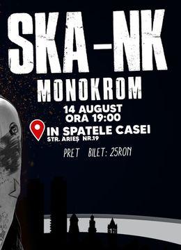 Timisoara: Concert Ska-nk