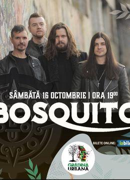 Concert Bosquito | Second Show
