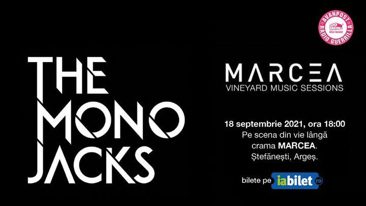 The Mono Jacks la Crama Marcea - Vineyard Acoustic Sessions