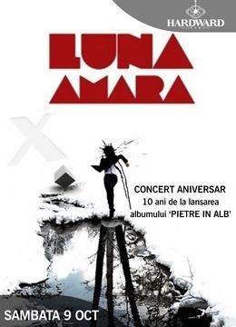 """Cluj: Luna Amara - 10 ani de """"Pietre in alb"""""""