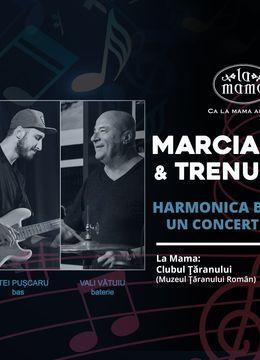 Concert Marcian Petrescu & Trenul de Noapte Harmonica Blues Extravaganza